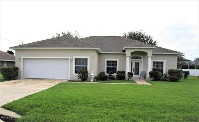 Palm Coast Single Family Home For Sale: 8 Lamoyne Lane