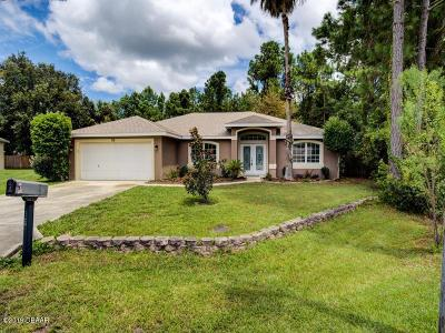 Palm Coast Single Family Home For Sale: 15 Burma Place