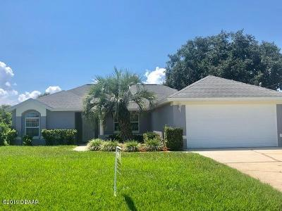 Palm Coast Single Family Home For Sale: 22 Fairhill Lane