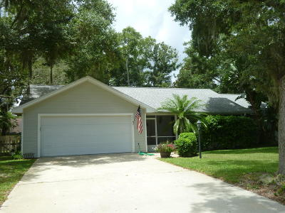 Ormond Beach Single Family Home For Sale: 1314 Overbrook Drive