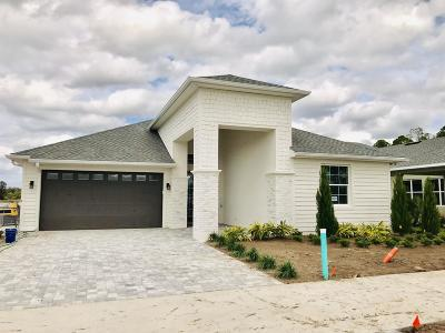 New Smyrna Beach Single Family Home For Sale: 3087 Borassus Lot 25 Drive