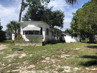 Port Orange Single Family Home For Sale: 5404 Pineland Avenue