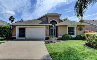 Daytona Beach Single Family Home For Sale: 120 Muscovy Court
