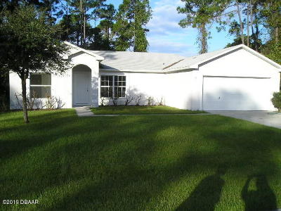 Palm Coast Single Family Home For Sale: 31 Lindberg Lane