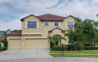 Daytona Beach Single Family Home For Sale: 104 Cario Court