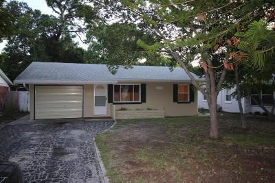 Ormond Beach Single Family Home For Sale: 810 Cordova Avenue