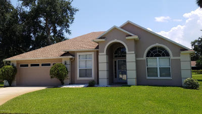 Daytona Beach Single Family Home For Sale: 413 Aleatha Drive