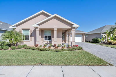 New Smyrna Beach Single Family Home For Sale: 3651 Poneta Avenue