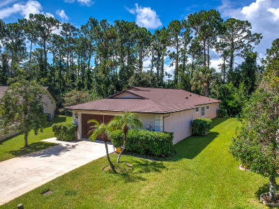Ormond Beach Single Family Home For Sale: 38 Big Buck Trail