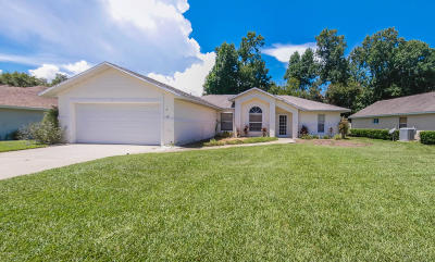 Ormond Beach Single Family Home For Sale: 7 Parkview Lane