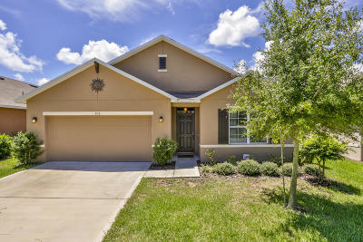 New Smyrna Beach Single Family Home For Sale: 456 White Coral Lane