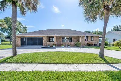 Port Orange Single Family Home For Sale: 617 Ipswich Lane