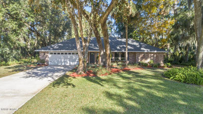Ormond Beach Single Family Home For Sale: 3904 Tano Drive