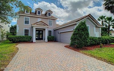 New Smyrna Beach Single Family Home For Sale: 463 Venetian Villa Drive
