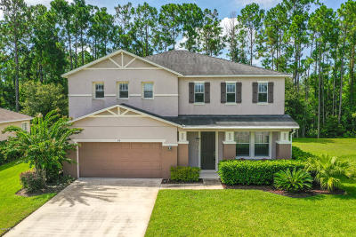 Palm Coast Single Family Home For Sale: 74 Rollins Lane