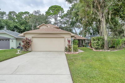 Port Orange Single Family Home For Sale: 6226 Poplar Grove Drive