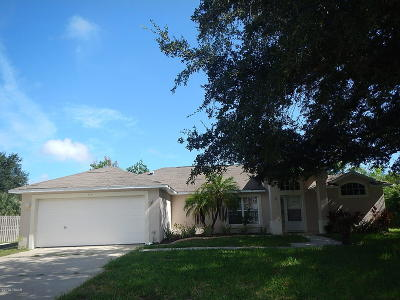 Volusia County Single Family Home For Sale: 414 Nash Lane