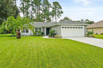 Palm Coast Single Family Home For Sale: 179 Bayside Drive