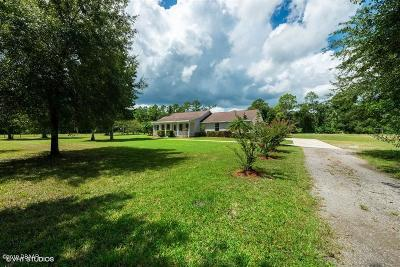 Volusia County Single Family Home For Sale: 2310 Jerry Circle