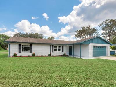 Deland  Single Family Home For Sale: 1598 Palmetto Avenue