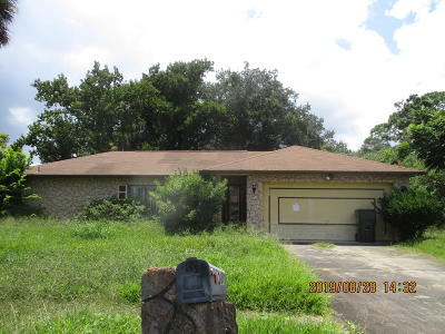 Volusia County Single Family Home For Sale: 1200 Mardrake Road