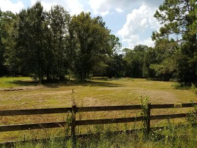Volusia County Residential Lots & Land For Sale: Halifax Drive