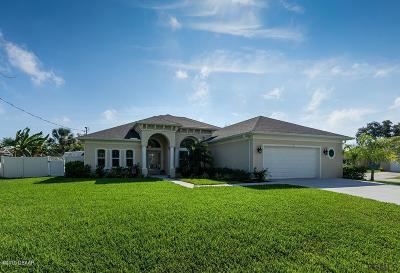 Palm Coast Single Family Home For Sale: 2 Chippeway Court