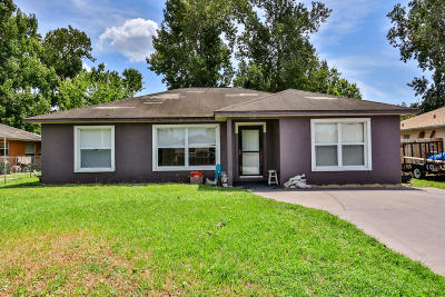 Volusia County Single Family Home For Sale: 717 Ellen Street