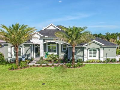 Ormond Beach Single Family Home For Sale: 3031 Silvermines Avenue