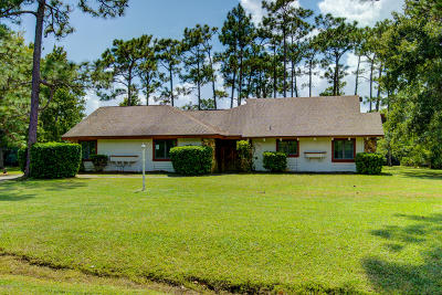 Volusia County Single Family Home For Sale: 213 Riverbend Road