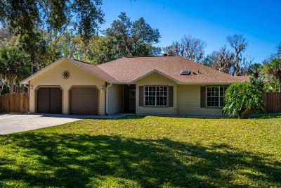 New Smyrna Beach Single Family Home For Sale: 894 Bolton Road