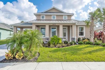 New Smyrna Beach Single Family Home For Sale: 3077 Borassus Drive