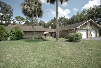 Volusia County Single Family Home For Sale: 517 Pelican Bay Drive