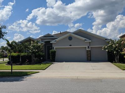 Deland  Single Family Home For Sale: 339 Orchard Hill Street