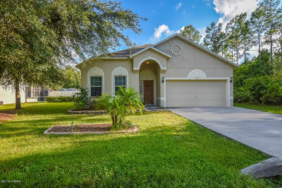 Palm Coast Single Family Home For Sale: 4 Kathryn Place