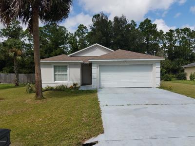 Palm Coast Single Family Home For Sale: 33 Randolph Drive