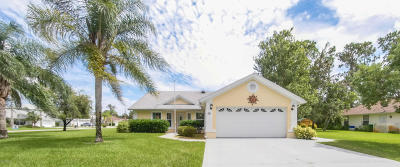 Palm Coast Single Family Home For Sale: 50 Banner Lane