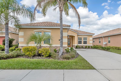 New Smyrna Beach Single Family Home For Sale: 3363 Luna Bella Lane