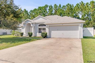 Palm Coast Single Family Home For Sale: 85 Raemoor Drive