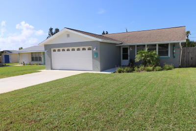 Volusia County Single Family Home For Sale: 7 Ocean Crest Drive