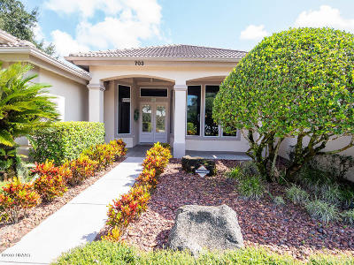 Volusia County Single Family Home For Sale: 703 Dolphin Head Lane