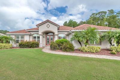 New Smyrna Beach Single Family Home For Sale: 2805 Casanova Court