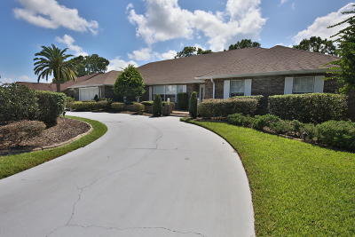 Volusia County Single Family Home For Sale: 845 Pelican Bay Drive