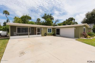 Volusia County Single Family Home For Sale: 2241 Brian Avenue