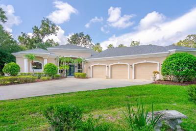 Volusia County Single Family Home For Sale: 1301 Wicklow Lane