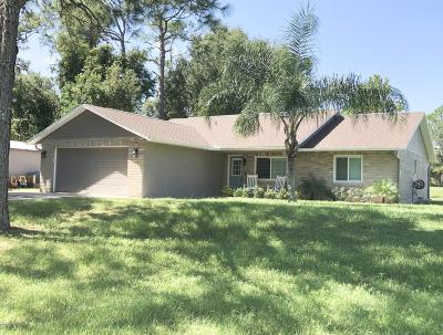 Volusia County Single Family Home For Sale: 333 S Glencoe Road