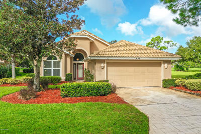 Volusia County Single Family Home For Sale: 436 Harbour Town Lane