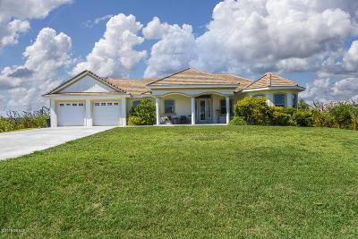 Palm Coast Single Family Home For Sale: 6546 Old A1a