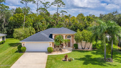 Port Orange Single Family Home For Sale: 438 Nash Lane