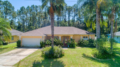 Palm Coast Single Family Home For Sale: 35 Red Clover Lane